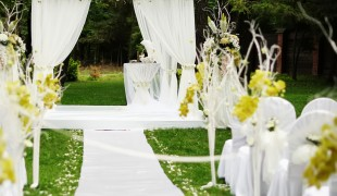Beautiful wedding ceremony in sunny garden.